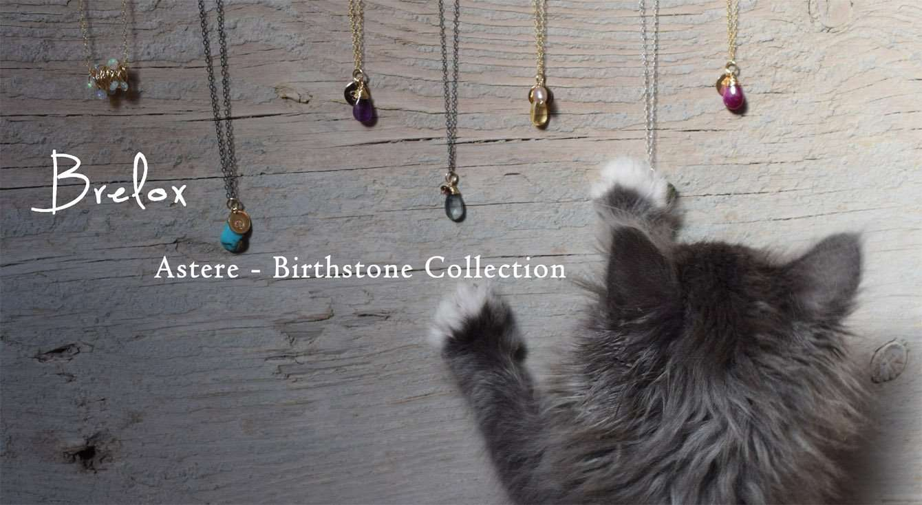 An image of jewelry across a wooden plank with a standing cat