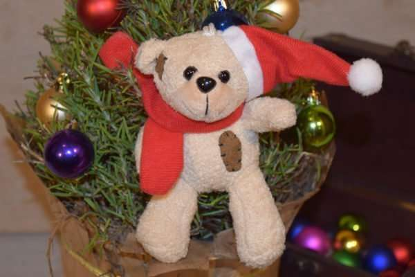 Christmas Teddy Bear W - Brelox
